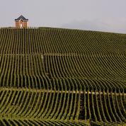 Champagne : la mondialisation bouleverse le secteur
