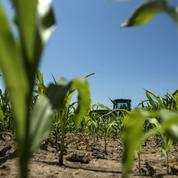 InVivo va doubler la mise sur l'«agriculture de précision»