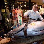 À Tokyo, le marché de Tsukiji a connu sa dernière criée du Nouvel An