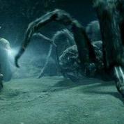 La littérature fantasy inspire les noms de sept nouvelles espèces d'araignées