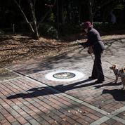 Au Japon, les trottoirs sont (un peu) des oeuvres d'art
