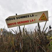 Notre-Dame-des-Landes : les préparatifs de l'évacuation de la ZAD s'accélèrent