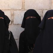 Une plainte visant l'État déposée par des familles de djihadistes emprisonnées par les Kurdes de Syrie