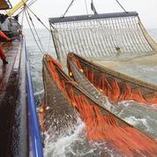 Pêche électrique: les pêcheurs reçus ce vendredi au ministère de l'Agriculture