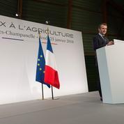 Négociations commerciales: Macron met la pression sur les distributeurs et industriels