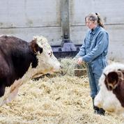 Agriculture, industrie, distribution: les nouvelles règles du jeu