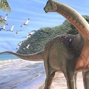 Un grand dinosaure herbivore découvert en Égypte