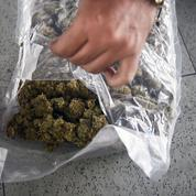 Trafic de drogue: pourquoi et comment l'Insee va l'intégrer au calcul du PIB