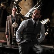 Les Animaux fantastiques 2 :Dumbledore contraint de rester dans le placard
