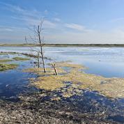 Les lacs, des sources de méthane très sensibles