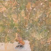 Dans la jungle de Sam Szafran à la Galerie Claude Bernard