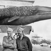 Saurez-vous débusquer ces baleines cachées dans Paris?