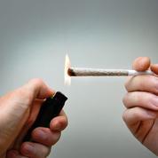 «Une simple contravention pour l'usage du cannabis, ou l'opium des progressistes»
