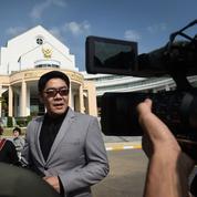 Thaïlande : un Japonais obtient la garde de ses 13 enfants, nés de mères porteuses
