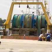 La pêche industrielle pille tous les océans