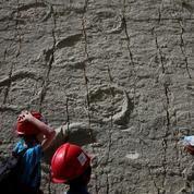 Bolivie: 12.000 empreintes de dinosaures à la verticale