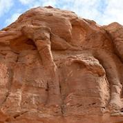Arabie saoudite : le mystère des chameaux sculptés il y a plus de 2000 ans reste entier