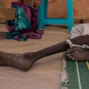 La sécheresse et les conflits font progresser les famines