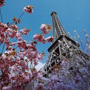 D'où vient le mot «printemps» ?