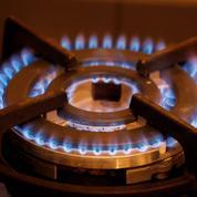Primagaz invente la bonbonne de gaz écolo