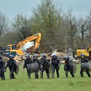 Notre-Dame-des-Landes : les forces de l'ordre se préparent à une guerre des nerfs