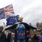 Les anti-Brexit s'organisent pour obtenir un nouveau référendum