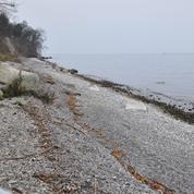 Le lac Léman empoisonné par le plastique