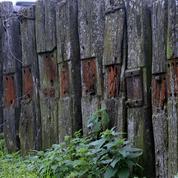 L'usage de la créosote très restreint en France