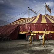 Le cirque, un patrimoine culturel en voie d'extinction?