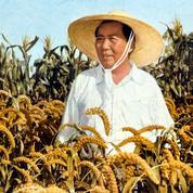 Il y a 60 ans, l'expérience désastreuse du Grand Bond en avant en Chine