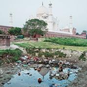 En Inde, le Taj Mahal vire au vert