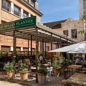 Les Belles Plantes, dynamique brasserie du Jardin des Plantes