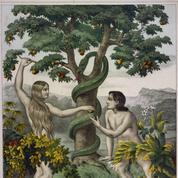 Pourquoi parle-t-on de «pomme d'Adam» ?