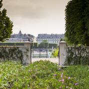 Jardins, jardin: Paris se met au vert