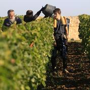 Les saisonniers, un poids considérable dans l'économie française