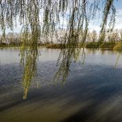 Noyades à Chalon-sur-Saône : la baignade était interdite dans le lac