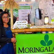 Un programme promeut le leadership des jeunes femmes malgaches