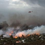 Au moins 79 morts dans de violents incendies en Grèce
