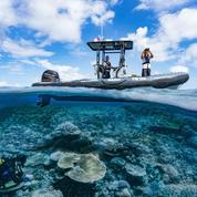 Les aires marines protégées sont efficaces, mais…