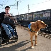 Un jeune handicapé privé de son chien dans un supermarché: une vidéo fait polémique