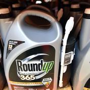 Trois choses à savoir sur Monsanto, cette firme controversée mais florissante