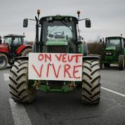Pourquoi un agriculteur se suicide tous les deux jours en France ?