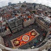 La pause photo à Bruxelles avec un tapis de fleurs mexicain sur la Grand-Place