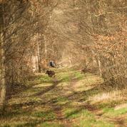 Les chasseurs à l'Élysée pour préparer la grande réforme de la chasse