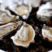 Mangerons-nous encore des huîtres dans cinq ans ?
