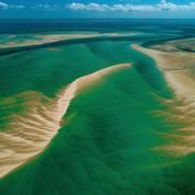 Le Mozambique de sable en savane