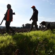 Décathlon dans le viseur des anti-chasse