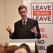Chez les conservateurs britanniques, cinquante nuances de Brexit