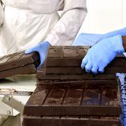 Les chocolatiers à la peine dans le cacao durable