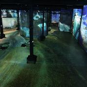 En immersion dans les paysages de Yann Arthus-Bertrand à l'Atelier des Lumières